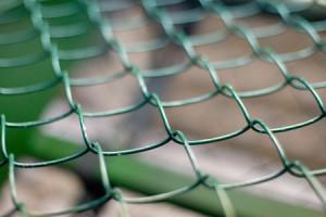 Сетка рабица покрытая пластиком